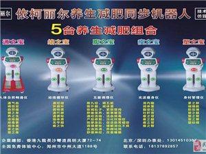 民权县依柯丽尔机器人减肥加盟