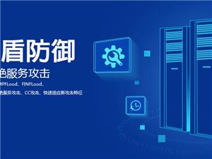 I5高防双线新手开服标配服务器