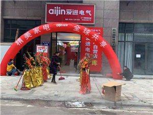 爱进电气走向全球的中国厨电品牌