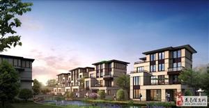 嘉和半岛独栋别墅488平米420万元