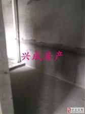 中山国际小户型住房出售33.8万元