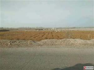瓜州镇护区队房屋一所34亩良田转让