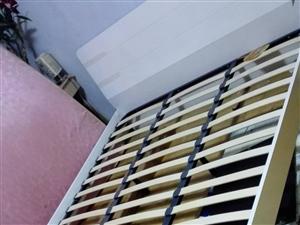 处理全新实木床,白色的,800元不议价,市中