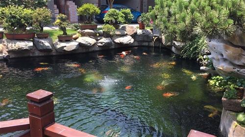 樂平市年年有魚電子商務孵化園