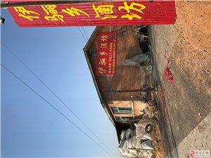 伊骊乡老窖酒坊现场接制 传统工艺古法酿制 保证质量