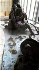 枫叶一线江景房豪华装修大三房带入户花园售价132万
