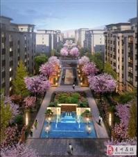 青城樱园电梯4楼127平3室76.3万包改名可按揭