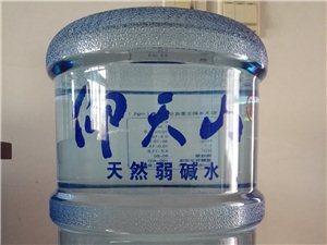 仰天山 山泉水−−−−-專賣_專用_轉送