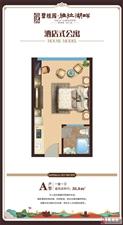 海南碧桂园亚拉湖畔1室1厅1卫36万元不限购