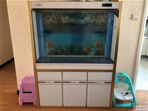 9成新大鱼缸出售