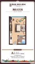 碧桂园雅拉湖畔1室1厅1卫精装交房拎包入住
