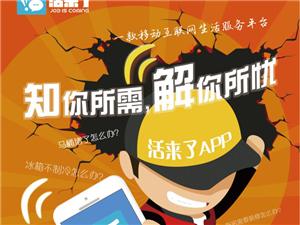 移动互联网+共享人力服务平台  活来了APP项目品鉴会