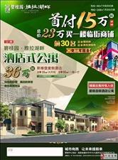 海南省儋州市碧桂园公寓36万元