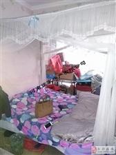 (288)领秀城2室1厅1卫57万元