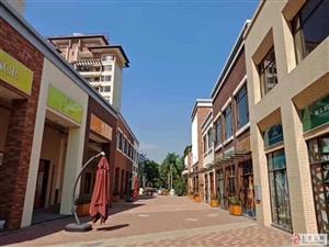 海南省碧桂园雅拉湖畔商铺特价12000一平米