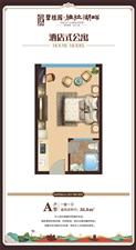 海南儋州那大碧桂园酒店式公寓