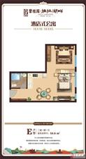海南省儋州雅拉湖畔1室1厅1卫78万元