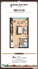海南省碧桂园雅拉湖畔1室1厅1卫40万精装交房