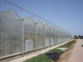 第五代溫室大棚建設