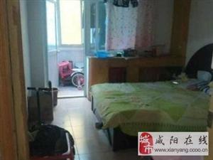 毛条路(统筹小区)简装两室万达购物中心毛条学校附近