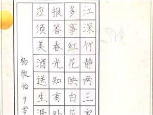 人人练字硬笔书法二级教学点加盟合作