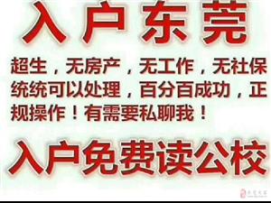 台湾戶口代辦要多少錢?實力公司告訴你