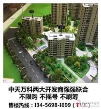杭州临安中天万科启宸——官方网站——欢迎您