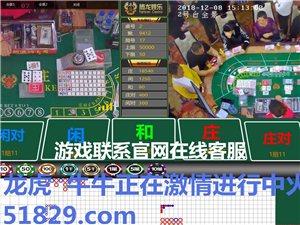 网上网赌正规实体平台可以亲临现场