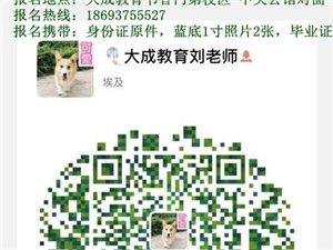 【大成教育】2019春季兰州大学2.5年制成人高等学历招生
