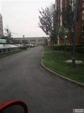 东方威尼斯5楼218平精装免税英才学区