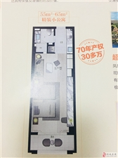 凤凰山庄精装单身公寓电梯洋房70年产权!!