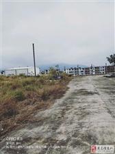 里仁96亩工业厂房转让2000万
