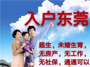 2019台湾最新三種入戶政策 入戶指南