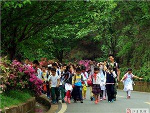 當地人說樂農湖畔農家樂可是武漢江夏學生們春游踏青的