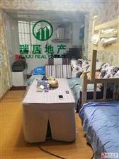 时代广场单身公寓,稀缺户型,底价出售