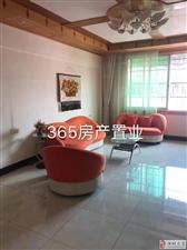 江滨一期、实验学区房、3室2厅2卫78.8万元