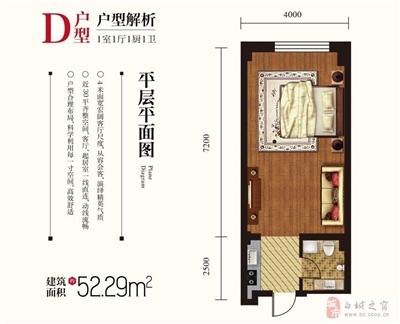 D户型-1室1厅1厨1卫