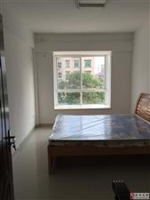 西城国际三房两厅拎包入住周边配套成熟随时看房