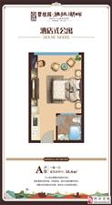 碧桂园酒店式公寓不限购小户型・低总价・拎包入住!