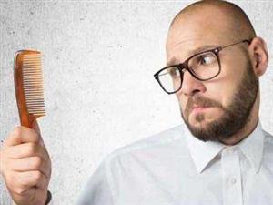 治疗脂溢性脱发的方法