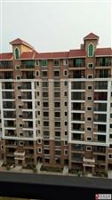 洋浦大桥海景119亩安置房3室1厅1卫53万元