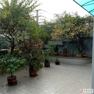 东方富苑3跃4带60平花园有车位109.8万