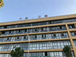 腾辉国际城单身公寓1室1厅1卫1000元/月