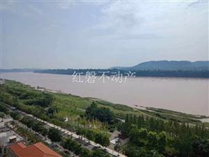 新城区最中心位置,正江景房,朝南视野开阔,采光极好