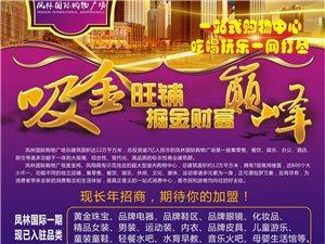 凤林国际购物广场旺铺长年招商,期待您的加盟!!!