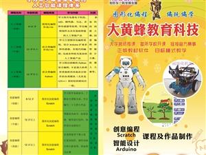 大黃蜂教育智能機器人、創意編程寒假訓練營火熱招生中