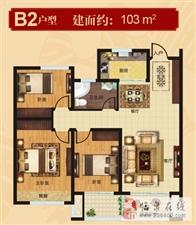 B2户型103平方