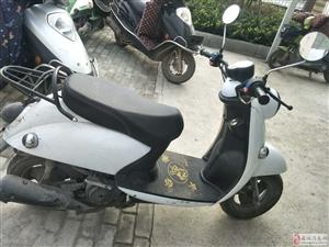小型摩托车处理价卖
