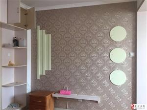 四海新城公寓1室1卫45平精装带家具空调