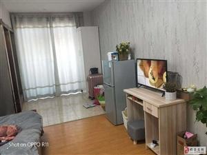 辉隆大市场单身公寓13000元/年包物业